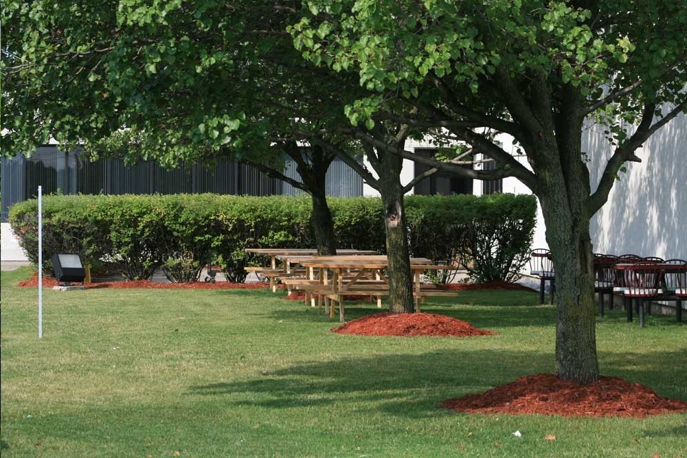 commercial-landscaping-5