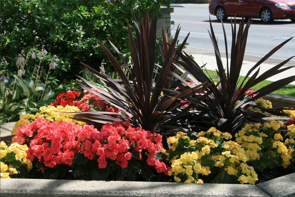commercial-landscaping-8